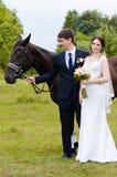 De bruid en de bruidegom bevinden zich in het park dichtbij het paard, huwelijksgang Witte kleding, gelukkig paar met een dier Gr Royalty-vrije Stock Afbeeldingen