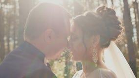 De bruid en de bruidegom in liefde, die elkaar in een mooi groen bos in de zon bekijken Close-upgezichten van jonggehuwden stock videobeelden