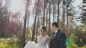 De bruid en de bruidegom lopen in een pijnboombos die, die handen houden en elkaar in de zon bekijken Kus gelukkig samen stock video