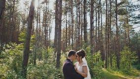 De bruid en de bruidegom omhelzen teder elkaar onder de pijnbomen in het bos de zon De dag van het huwelijk Ogenblikken van stock footage