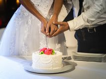 De bruid en de bruidegom snijden samen cake bij hun huwelijk royalty-vrije stock fotografie