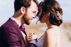 De bruid en de bruidegom van de kusliefde gelukkig samen stock foto