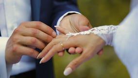 De bruid en bruidegomuitwisselingstrouwringen stock footage