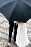 De bruid en de bruidegom Royalty-vrije Stock Fotografie