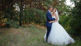 De bruid en de bruidegom stellen in het hout stock video
