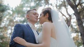 De bruid en de bruidegom stellen in het hout stock videobeelden