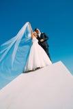 De bruid en de bruidegom worden gefotografeerd tegen de hemel Royalty-vrije Stock Foto's