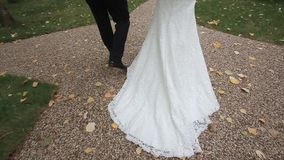 De bruid en de bruidegom zijn op de weg Langzame Motie stock footage