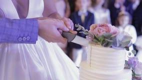 De bruid en een bruidegom snijden hun huwelijkscake Handenbesnoeiing van een plak van een cake stock videobeelden