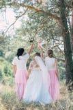 De bruid en haar meisjes brachten een goede tijd in het park door royalty-vrije stock afbeeldingen