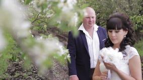 De bruid en verzorgt een romantische gang in de appelboomgaard stock video