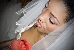 De bruid met nam toe Royalty-vrije Stock Fotografie