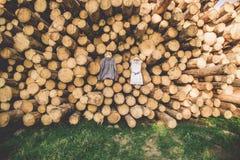 De bruid` s kleding hangt op bomen Royalty-vrije Stock Afbeeldingen