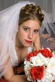 De Bruid van de herfst Stock Afbeeldingen