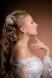 De bruid van de luxe op een heldere achtergrond Royalty-vrije Stock Afbeelding