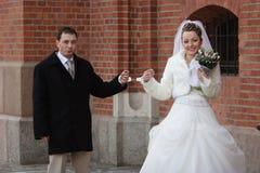 De bruidegom en de bruid Royalty-vrije Stock Afbeeldingen