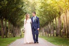 De bruidegom het lopen en de bruid Stock Fotografie