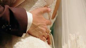De bruidegom omhelst de bruid stock video