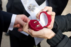 De bruidegom stijgt trouwringen op Stock Foto's