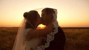 De bruidegom van bruidkussen onder sluier bij zonsondergang Jonge man en vrouwenliefde aan kus stock video