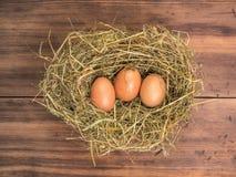 De bruine eieren in hooi nestelen Landelijke ecoachtergrond met bruine kippeneieren en stro op de achtergrond van oude houten pla Royalty-vrije Stock Foto's