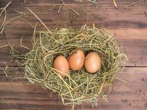 De bruine eieren in hooi nestelen Landelijke ecoachtergrond met bruine kippeneieren en stro op de achtergrond van oude houten pla Royalty-vrije Stock Afbeelding