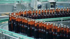 De bruine flessen met bier op een brouwerijtransportband, sluiten omhoog stock videobeelden