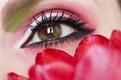 De bruine groene ogen van de vrouwen` s make-up Stock Foto