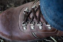 De bruine schoenen bonden strakke lijn Stock Foto's