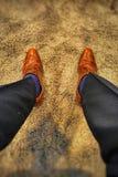 De bruine Zwarte Broeken van Schoenen Blauwe Sokken royalty-vrije stock fotografie