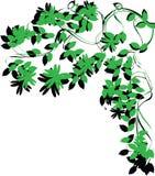 De brunchgebladerte van de boom Stock Foto