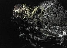 De buishol van de VÃdgelmirlava door grote openingsdieingang, op het Hallmundarhraun-lavagebied wordt gevestigd in West-IJsland,  royalty-vrije stock fotografie