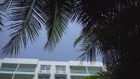 De buitenkant die van de dagtijd schot van generisch hotelflatgebouw met koopflats of flatgebouw in tropische plaats met palmen v stock videobeelden