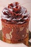 De buitensporige cake van de chocolade Royalty-vrije Stock Foto's