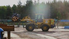 De bulldozer draagt logboeken, gele bulldozer, zaagmolen stock footage