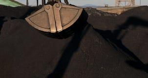 De bulldozer werkt in de zeehaven De hopen van de harkensteenkool