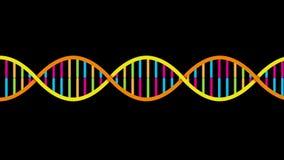 De bundel van DNA stock footage