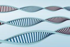De bundels van DNA Stock Fotografie