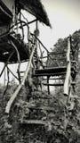 De Bungalow van het trapspook in Wildernis royalty-vrije stock fotografie