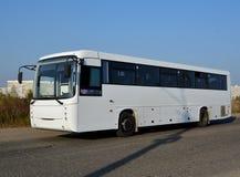 De bus, die door de stad reizen stock afbeeldingen