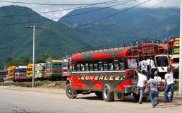 De bus van de kip van het laatste ogenblik Stock Fotografie
