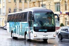 De Bus van de MENSENr07 Leeuw Royalty-vrije Stock Foto's