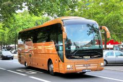 De Bus van de MENSENr07 Leeuw Stock Afbeelding