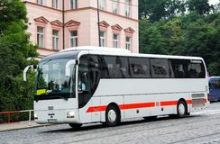 De Bus van de MENSENr07 Leeuw Stock Foto's