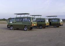 De bussen van de safari stock afbeeldingen