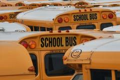 De bussen van de school Royalty-vrije Stock Foto's