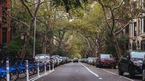 De buurten van Brooklyn royalty-vrije stock foto's