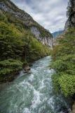 De Bzyb-bergrivier in Abchazië Stock Foto's