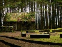 De cabine in het hout stock afbeeldingen