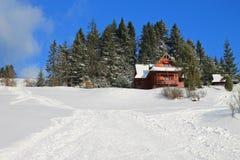 De cabine in het kleine bos stock fotografie